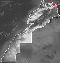 Mapa de distribución de Chalcides mauritanicus