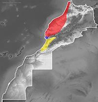 Mapa de distribución de Chalcides mionecton