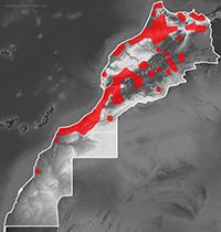 Range map of Chamaeleo chamaeleon