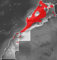 Mapa de distribución de Daboia mauritanica