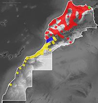 Range map of Malpolon monspessulanus