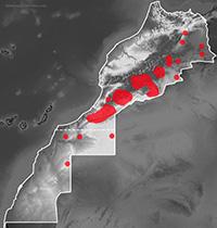 Mapa de distribución de Mesalina guttulata