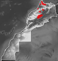 Range map of Natrix natrix
