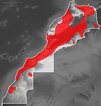 Mapa de distribución de Psammophis schokari