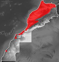Mapa de distribución de Tarentola mauritanica