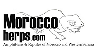 www.moroccoherps.com