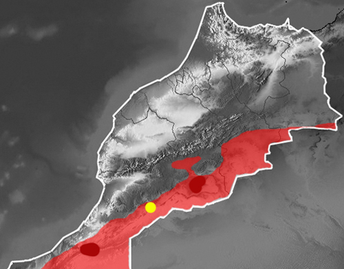 Distribution map Echis leucogaster in Morocco