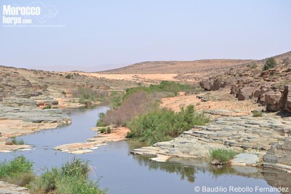 Oued Assaka