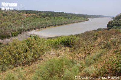 Lago en la región de Kenitra