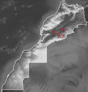 Mapa de distribución de Saurodactylus slimanii